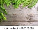 frame from fern leaves on old... | Shutterstock . vector #688135237