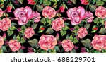 wildflower rosa flower  pattern ... | Shutterstock . vector #688229701