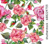 wildflower rosa flower  pattern ... | Shutterstock . vector #688229755