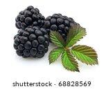 Fresh sweet blackberry - stock photo