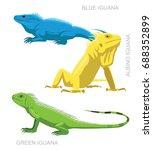 lizard iguana set cartoon... | Shutterstock .eps vector #688352899