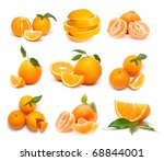 big collection of oranges   Shutterstock . vector #68844001