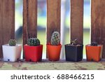 Small photo of Cactus sort in vase abreast front slide wood in vintage style