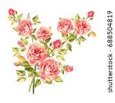 watercolor pink roses. vintage... | Shutterstock . vector #688504819