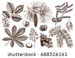 set of hand drawn trees sketch. ... | Shutterstock . vector #688526161