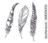 set of beautiful hand drawn... | Shutterstock .eps vector #688556551