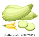 zucchini isolated on background....