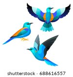 Stock vector stylized birds european roller 688616557