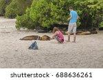 galapagos  ecuador  august  ... | Shutterstock . vector #688636261