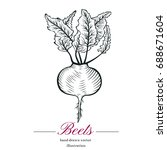 hand drawn sketch beets sketch. ... | Shutterstock .eps vector #688671604