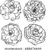 set of roses. vector... | Shutterstock .eps vector #688676644