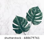 big green tropical leaves on... | Shutterstock . vector #688679761