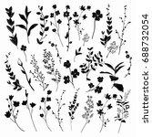 black hand drawn herbs  plants... | Shutterstock . vector #688732054