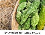 healthy herbs bitter melon ... | Shutterstock . vector #688759171