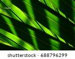 lines and textures of green...   Shutterstock . vector #688796299