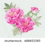 blooming flowers  the leaves... | Shutterstock . vector #688852585