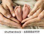 baby feet in parent hands   Shutterstock . vector #688886959