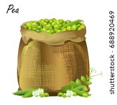 sack of peas. hand drawn... | Shutterstock .eps vector #688920469