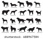 vector set of different breeds... | Shutterstock .eps vector #688967584