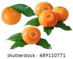 mandarin fruits colleague... | Shutterstock . vector #689110771