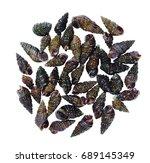 small snails river snail close...   Shutterstock . vector #689145349