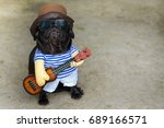 Stock photo indy musician guitarist pug dog funny pug dog wearing indy musician costume with ukulele 689166571