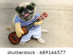 Stock photo indy musician guitarist pug dog funny pug dog wearing indy musician costume with ukulele 689166577