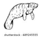 manatee water animal engraving... | Shutterstock .eps vector #689245555