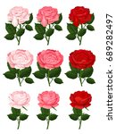 beautiful pink and red roses... | Shutterstock .eps vector #689282497
