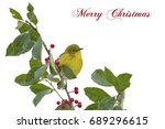 Small photo of Pine Warbler on American Holly Branch with Christmas Greeting