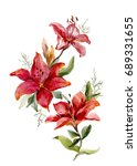 Beautiful Red Tiger Lilies On...