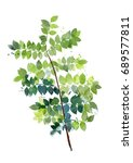 watercolor spring leaf | Shutterstock . vector #689577811