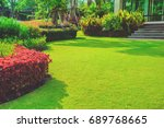 green lawn  the front lawn for... | Shutterstock . vector #689768665