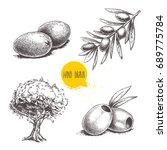 sketch hand drawn olives set.... | Shutterstock .eps vector #689775784