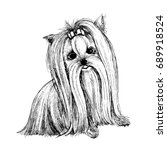 yorkshire terrier. sketch. | Shutterstock .eps vector #689918524