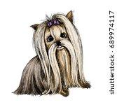 yorkshire terrier. color sketch. | Shutterstock .eps vector #689974117