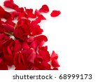 Stock photo red roses petals background 68999173