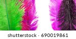 colored feather | Shutterstock . vector #690019861