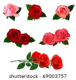 Stock vector big set of a beautiful colored roses vector illustration 69003757