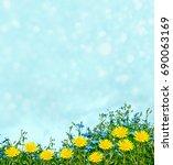 dandelion flower against the... | Shutterstock . vector #690063169