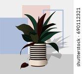 modern plants in pots   Shutterstock .eps vector #690112321