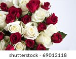 Stock photo red and white roses isolated on a white background with space for text 69012118
