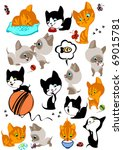 Stock vector the complete set of different cheerful kittens similar in a portfolio 69015781