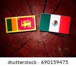 sri lankan flag with mexican... | Shutterstock . vector #690159475
