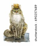 Royal King Maine Coon Cat With...