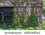 wall covered with green leaves... | Shutterstock . vector #690298561