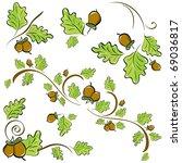 set of ornaments made of oak... | Shutterstock .eps vector #69036817