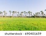 Beautiful Nature Country ...