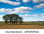 Idyllic summer meadow in Poland - stock photo