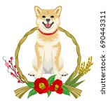 shiba inu into the japanese... | Shutterstock .eps vector #690443311